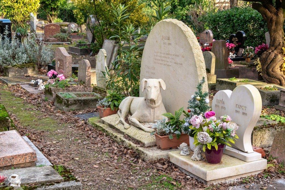 Old dog memorial in the pet cemetery of Paris
