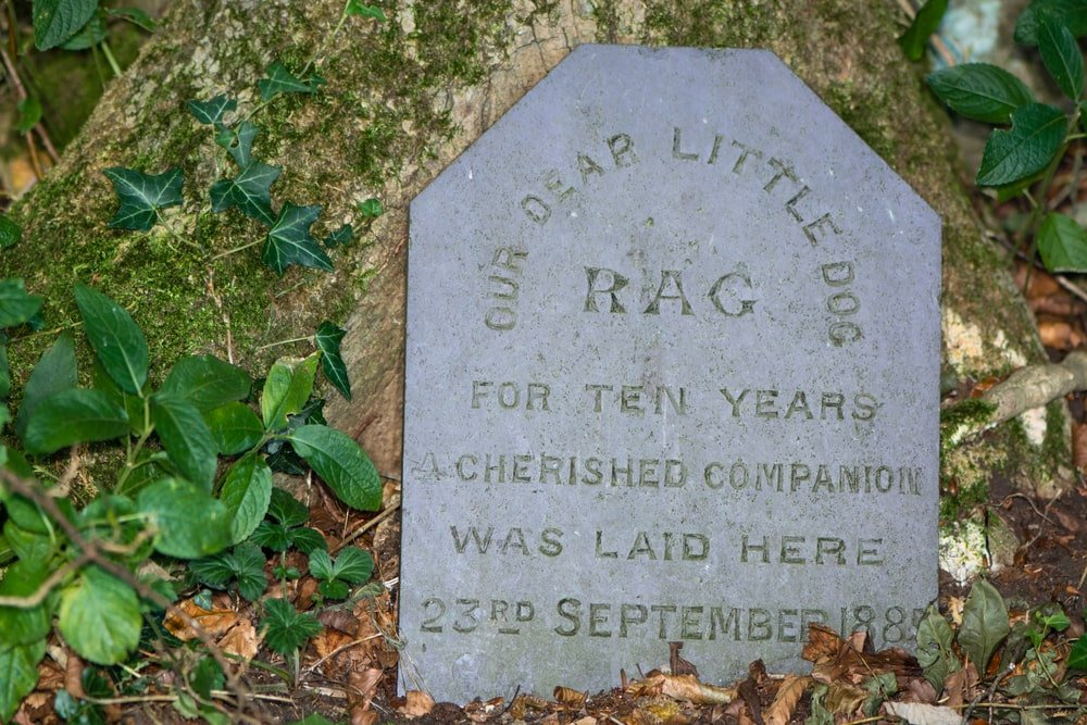 A headstone of a pet who passed away
